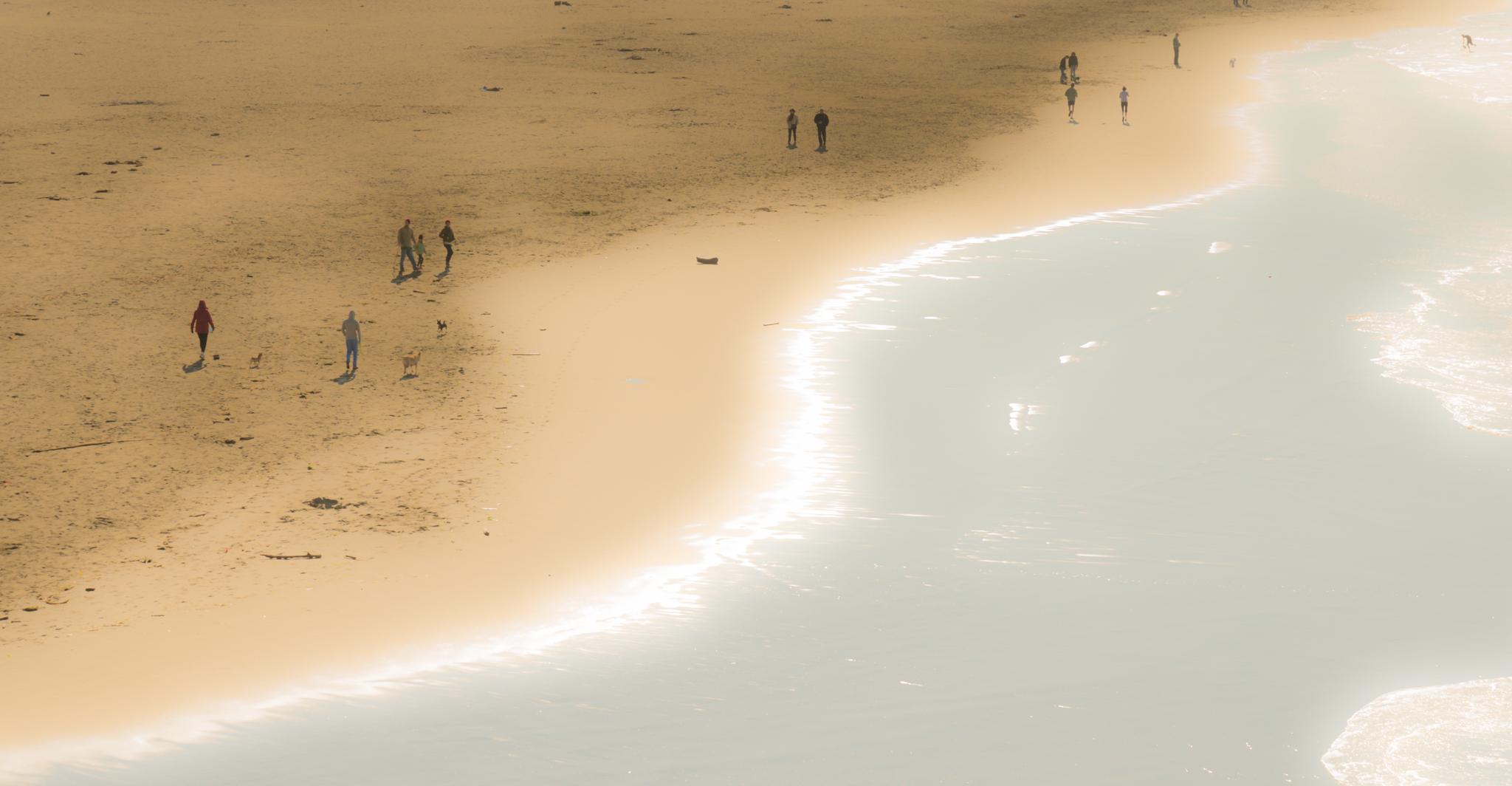 Burning Edge - Ocean Beach - 2013